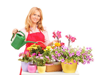 A beautiful female florist holding a can and watering flowers