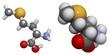 Methionine (Met, M) molecule