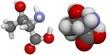 Threonine (Thr, T) molecule
