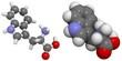 Tryptophan (Trp, W) molecule