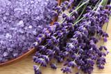 Lavender - 42696418