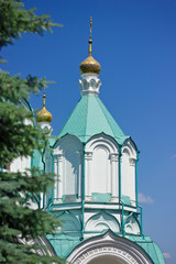 The dome of the church in the Svyatogorsky