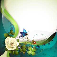Background with rose, butterfly and drops of water