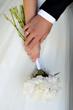blooming, bridal, detail, flowers, hands, paeonia, wedding