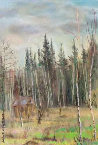 small house in autumn forest