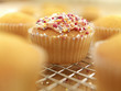 Close up of sprinkled cupcake cooling on wire rack
