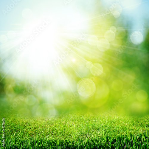 Deurstickers Weide, Moeras Under the bright sun. Abstract natural backgrounds