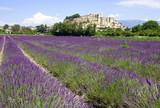 Château de Grignan - Drôme Provençale