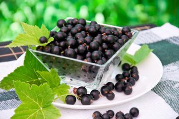 Fresh blackcurrant in glass bowl