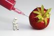 Erdbeere mit Pestiziden/ gespritzt und Schutzanzug