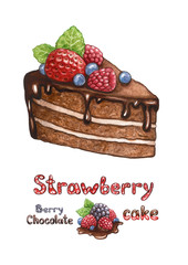 Illustration of chocolate cake with berries