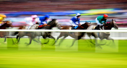 Royal Ascot Horse Race