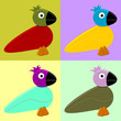 Colorful abstract birds background with different colors