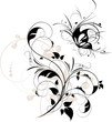 Abstract floral background with butterfly