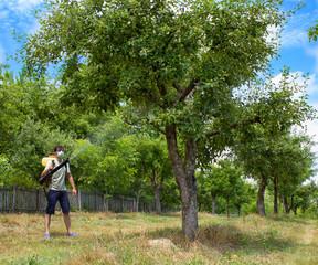farmer spraying the trees