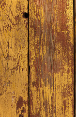 old wood texture (for background)