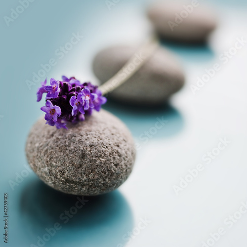 canvas print picture wellness-stones