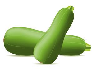 zucchini vector illustration