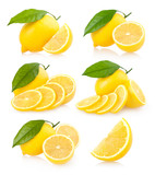 set of 6 lemon images