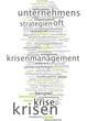Krisen Krisenmanagement
