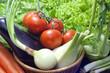 Vegetables organic assortments in the garden