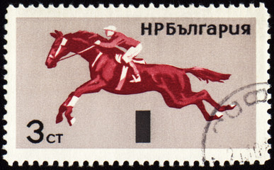 Horse show jumping on post stamp