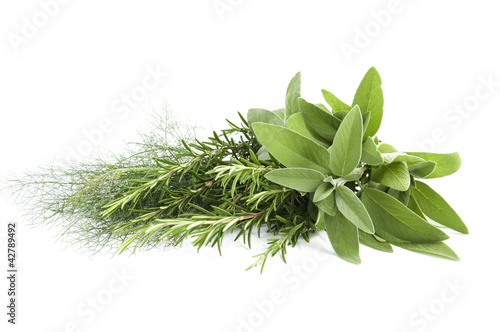 mik fennel, rosemary and sage