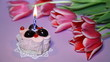 lilac color, Tulips,  candle, sweet cake