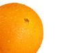 Wet orange macro over white