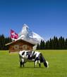 Matterhorn mit Almhütte und Kuh