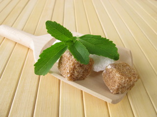 Stevia und Würfelzucker
