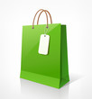 Shopping paper bag green empty, vector
