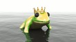 frog animation 3