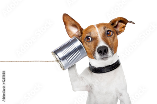 Poster dog on the phone