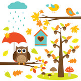 Fototapety Birds,trees and owl. Autumnal set of vector elements