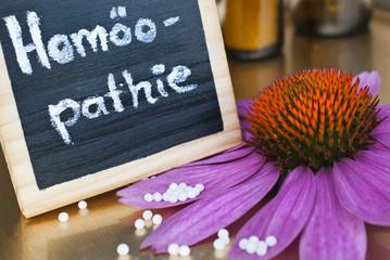 Homöopathieschild mit Echinaceablüte