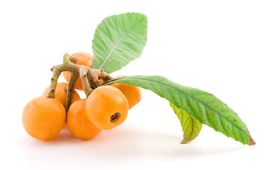 Loquat fruit isolated on a white background