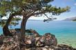 am Promenadenweg von Brela an der Makarska Riviera