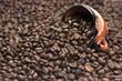 Fondo, granos de café, taza