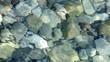 Pebbles on sea shore