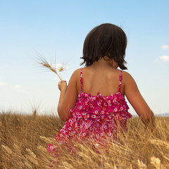 Provence - Enfant dans les champs de blés