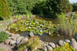 Beautiful classical garden fish pond gardening background