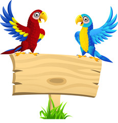 Macaw bird with blank signboard