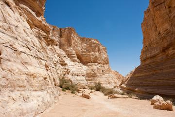 Negev desert in the south Israel