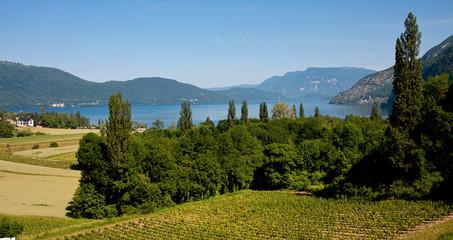 Vue sur le Lac du Bourget et les vignes de Brison St Innocent