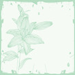 Floral background. Beautiful frame with flower lily