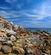 Sardegna, scogliera solitaria e selvaggia