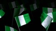 nigeria_flag_crowd_3d_loopable