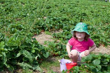 Kleinkind hockt auf dem Erdbeerfeld mit zwei kleinen Blecheimern