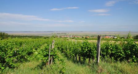 Urlaubs-und Weinort Mörbisch am Neusiedler See